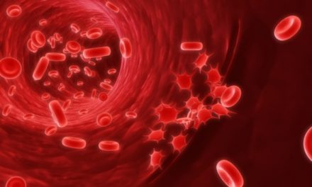 Protein in Blood – Symptoms and Causes