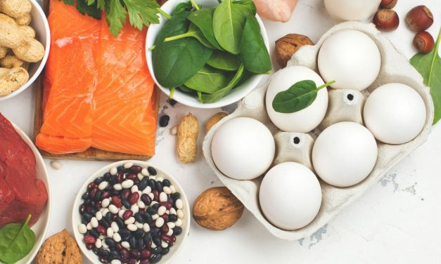 Which is Best Protein Food?