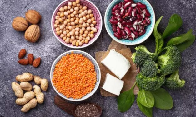 Protein Vegetarian – The 8 MAIN Protein Sources For Vegans and Vegetarians