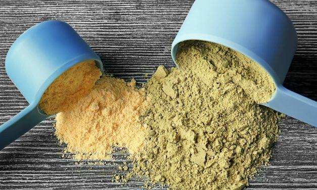 Protein Vegan Powder – The Best Vegan Protein Powders